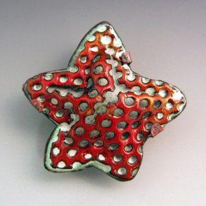 Karin-Salomon-Sea-Star
